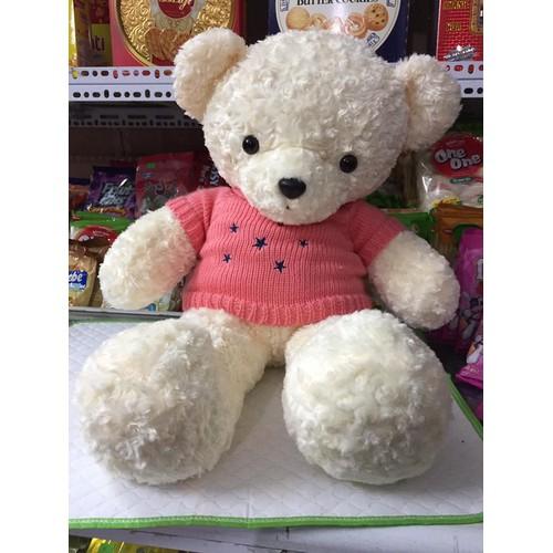 Mẫu gấu bông teddy lông xoắn hoa hồng